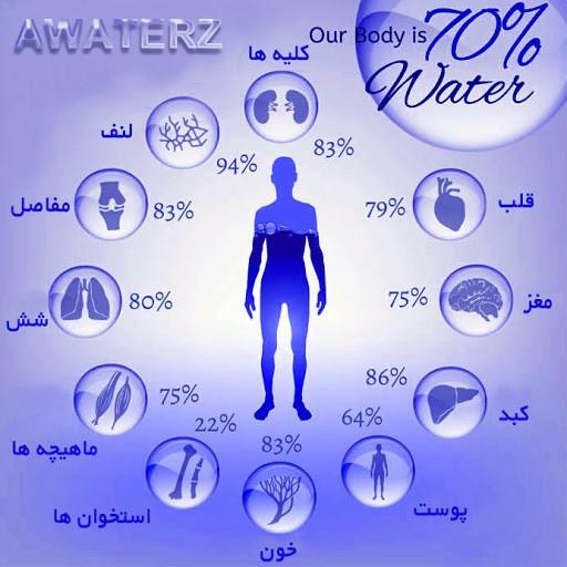 میزان مصرف اعضای بدن از آب